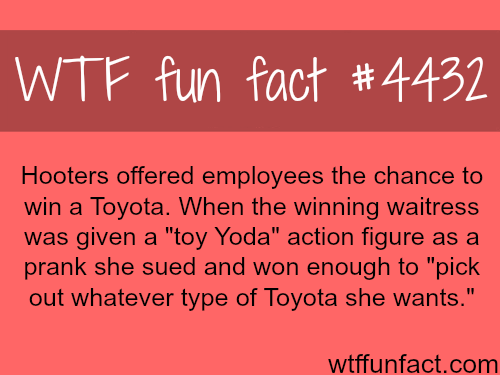 Hooters pranks an employee -   WTF fun facts