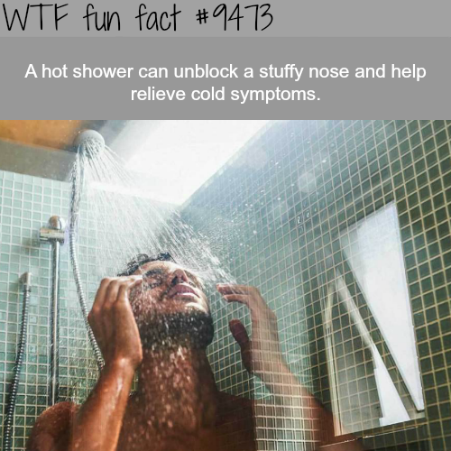 hot shower - WTF fun fact