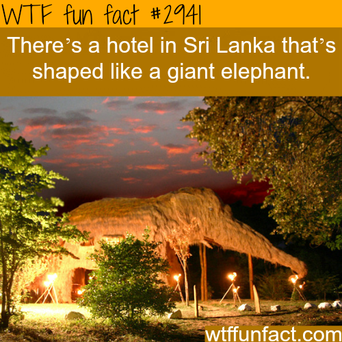 Hotel in Sri Lanka that is shaped like an elphant -  WTF fun facts