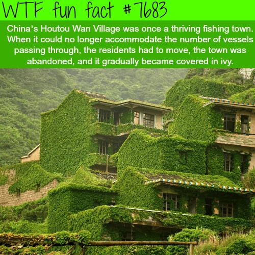 Houtou Wan Village in China - WTF fun fact