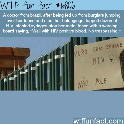 How a Brazilian doctor is trying to stop thieves from entering her home - WTF fun fact