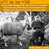 how a goat became a war hero wtf fun facts