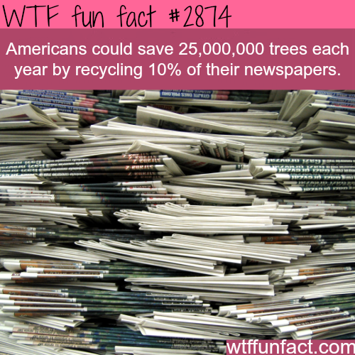 How Americans could save the trees -WTF fun facts