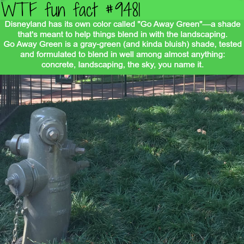 How Disneyland hides ugly thigs - WTF fun fact