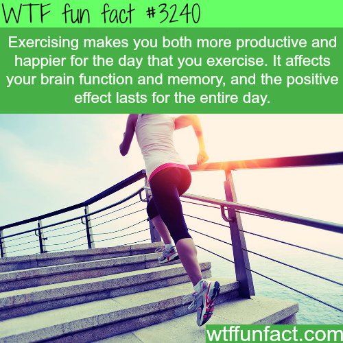 How exercising can make your day better -  WTF fun facts