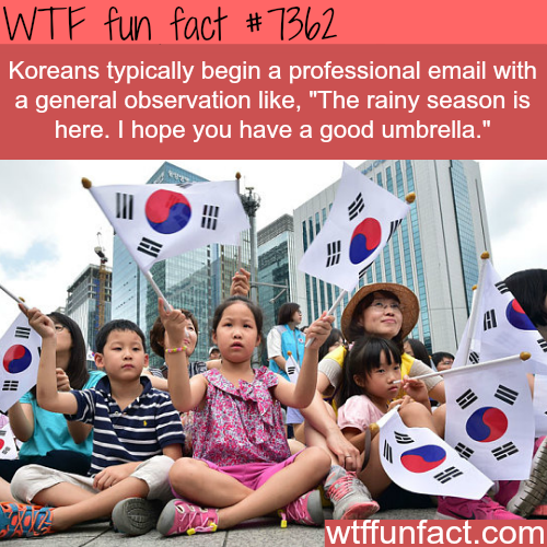 How Koreans start emails - WTF fun facts