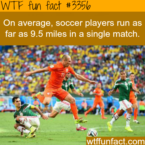 How long does a soccer player run in each match - WTF fun facts