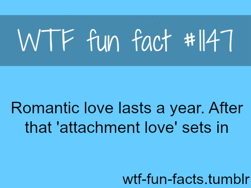 (soucre) -  How long does romantic love last - love fact