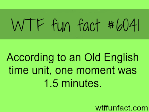 How long is a moment - WTF fun facts