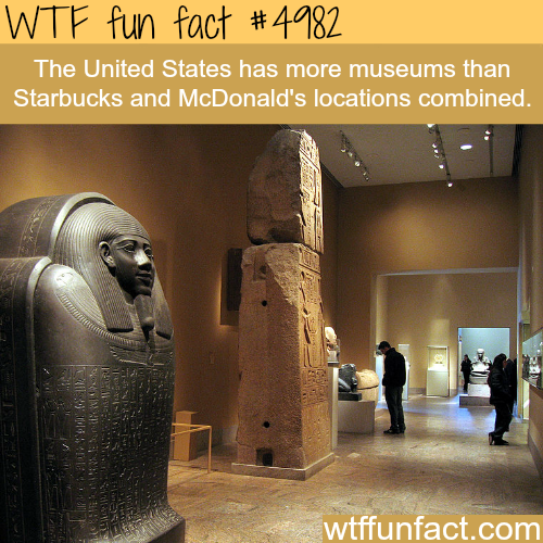 How many museums in the USA - WTF fun facts