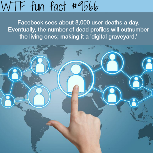 How many people on Facebook die each day? - WTF fun fact