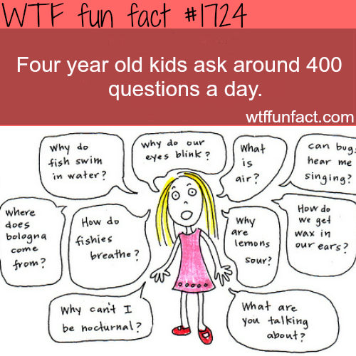 How many questions do 4 year old kids ask? - WTF fun facts