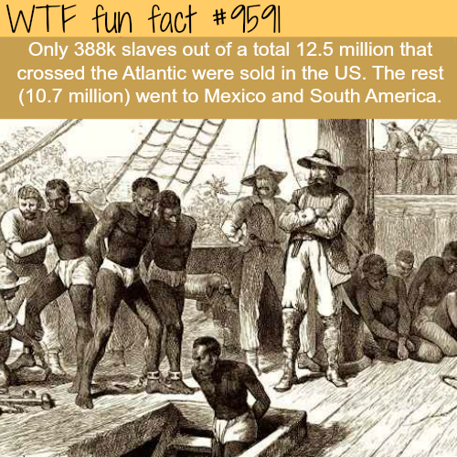 How many slaves came to the U.S. - WTF fun fact