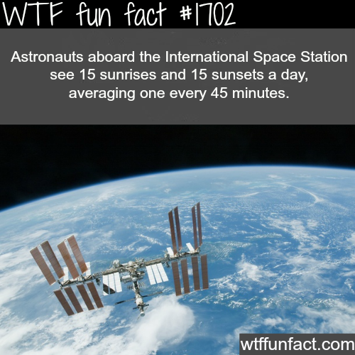 How many sunrises and sunsets a day an astronauts on ISS see? - WTF fun facts