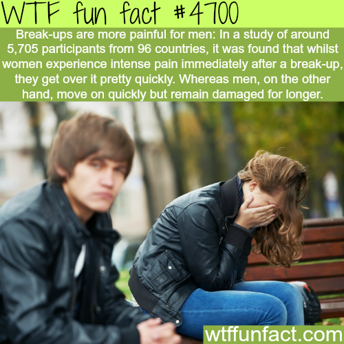 How men feel about breakups - WTF fun facts