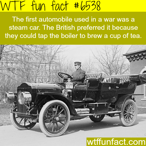 How much do the British love tea? - WTF fun facts