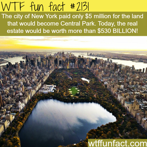 How much is Central Park Worth? - WTF fun facts