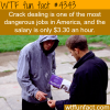 how much money does a crack dealer make wtf fun