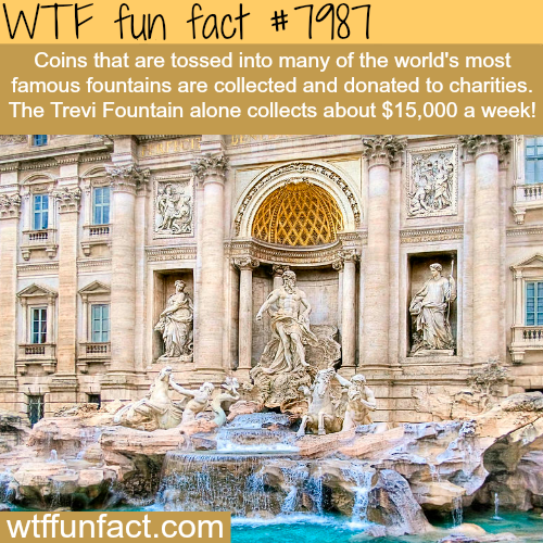 How much money is thrown into the Trevi Fountain - WTF fun fact