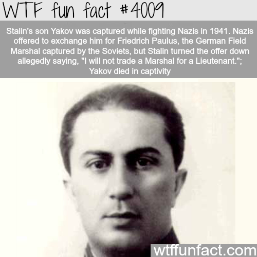 How much Stalin loved his son Yakov - WTF fun facts
