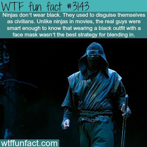 How ninjas actually looked like -WTF fun facts