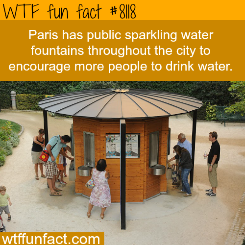 How Paris is encouraging it's people to drink more water - WTF fun facts