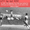 how pele halted the civil war in nigeria wtf fun