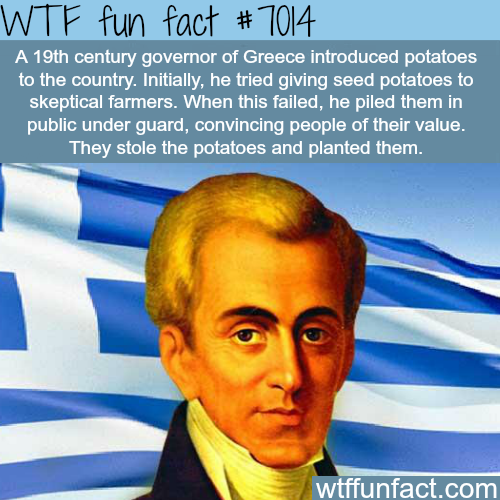 How potatoes were introduced to Greece - WTF fun facts