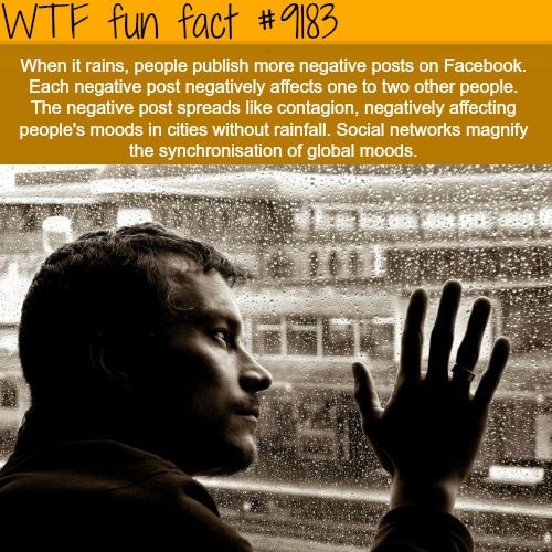 How Raining Effects Your Mood - WTF Fun Facts