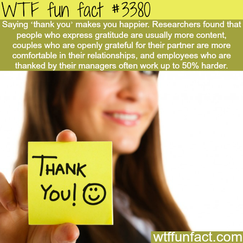 "How saying ""thank you"" could make you feel better -  WTF fun facts"