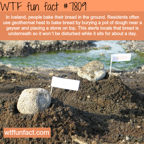 How some residents in Iceland make bread - WTF fun facts