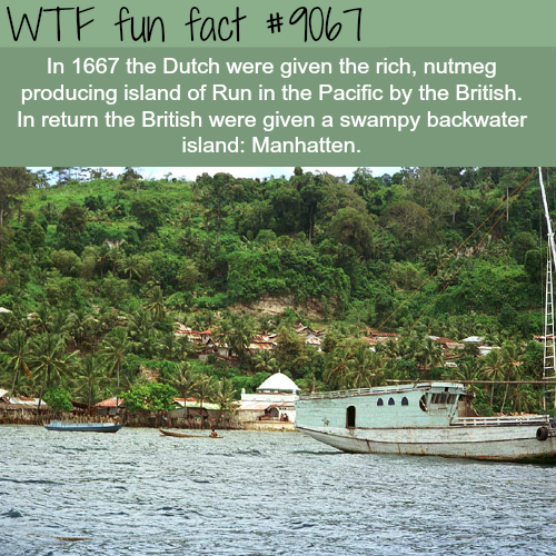 How the British got Manhatten - WTF fun facts