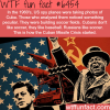 how the cuban missile crisis started wtf fun