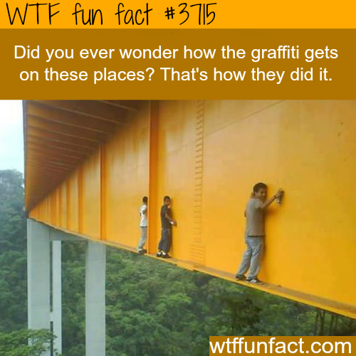 How the graffiti gets on those high places? -  WTF fun facts