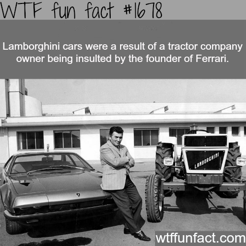 How the Lamborghini cars were created - WTF fun facts