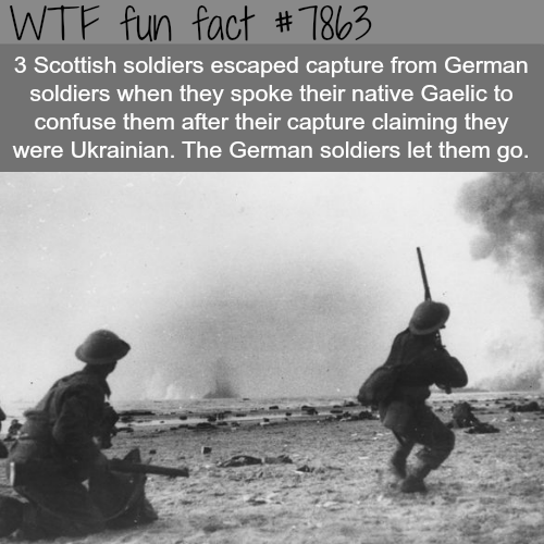 How these Scottish soldiers escaped German capture - WTF fun facts