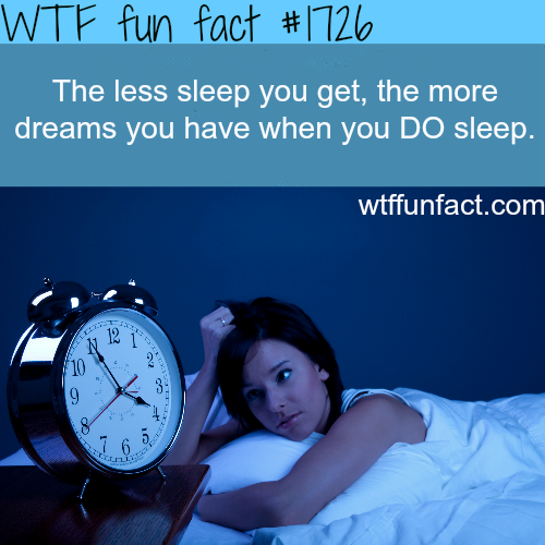 How to dream - WTF fun facts