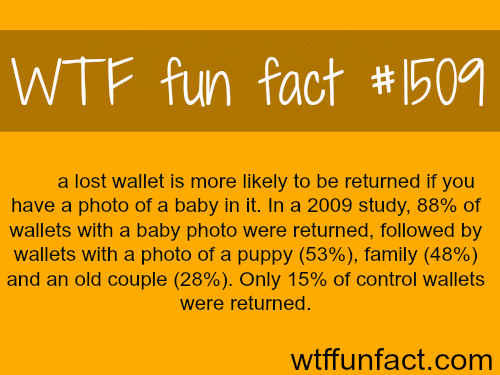 Lost wallets with babypictures