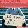 how to get interviewed and find a job