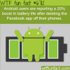 how to increase your battery life wtf fun fact
