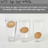 how to know if an egg is spoiled wtf fun fact
