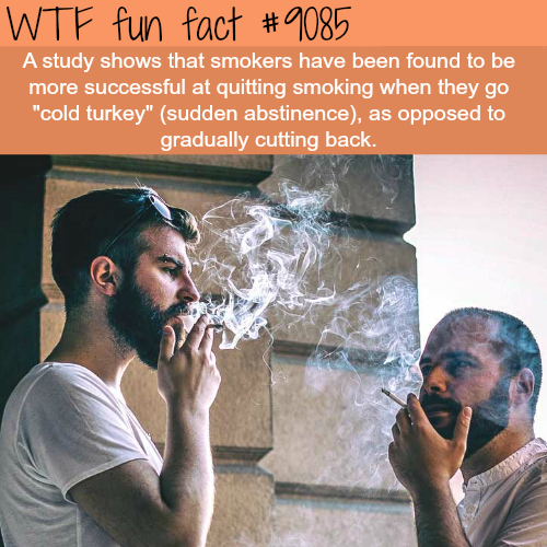 How to quit smoking - WTF fun fact