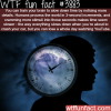 how to slow down time wtf fun facts