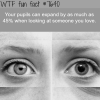 how to tell if someone likes you wtf fun facts