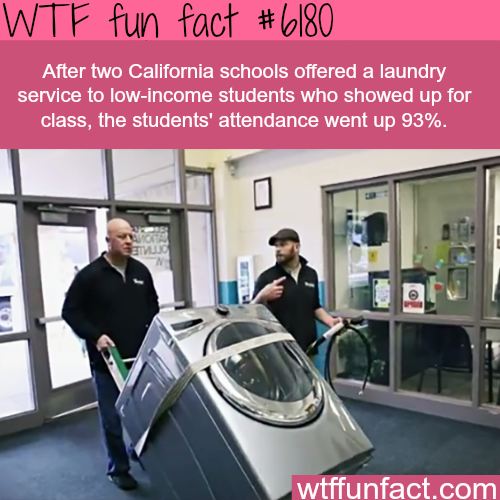 How two school districts in California increased attendance - WTF fun facts