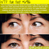 how your brain plays tricks on you wtf fun fact