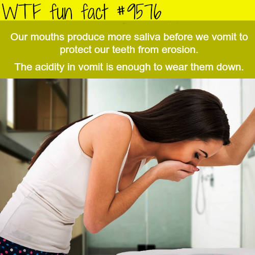 How your brain protects your body… - WTF fun fact