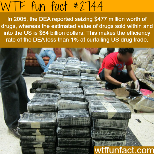 What percent of drugs does the DEA bust? - WTF fun facts