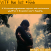 hugs wtf fun fact