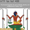 huh the ancient egyptian sky god wtf fun fact